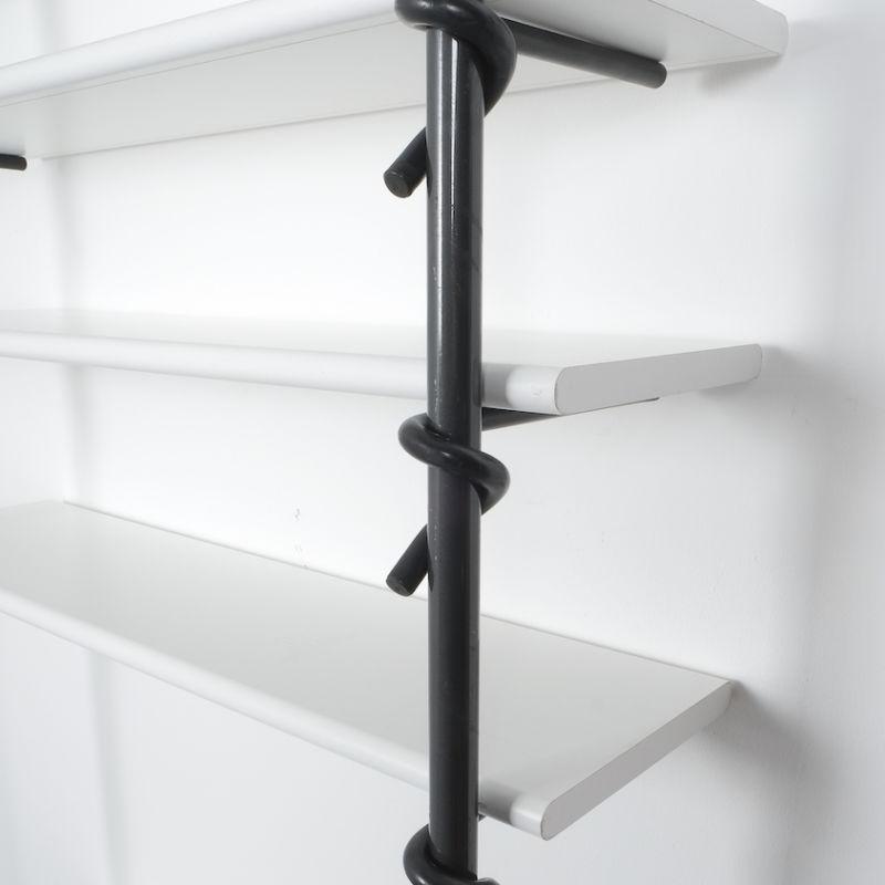 shelf Pagani e Angelo Perversi_01