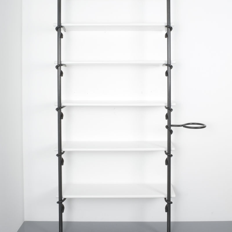 shelf Pagani e Angelo Perversi_11